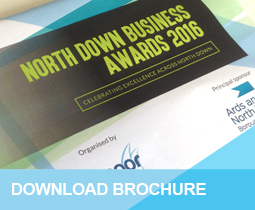 North Down Business awards Brochure